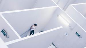 social media in a maze